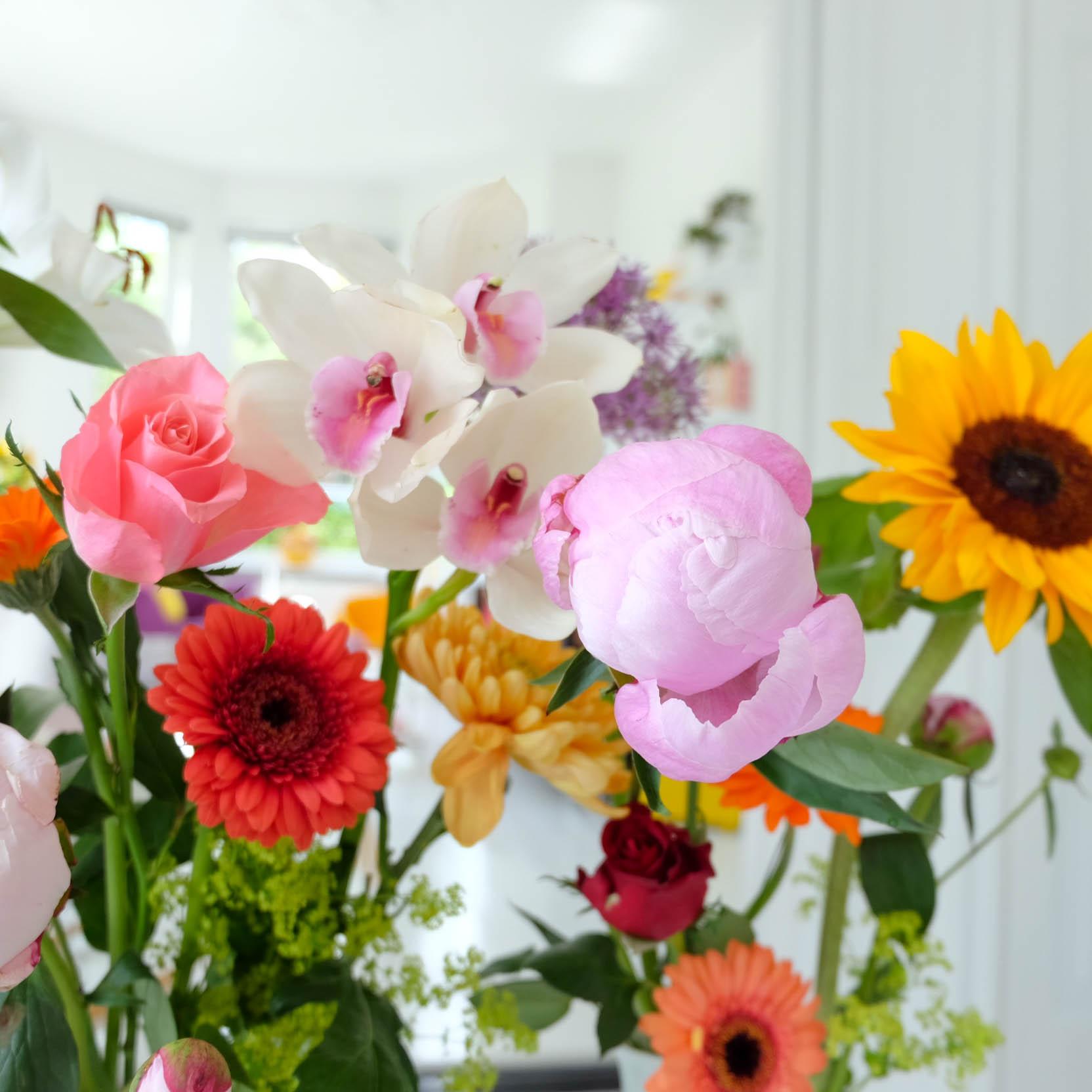 FlowerPower7